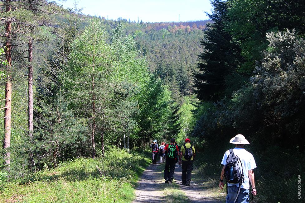 PR6_ paisagem com caminhantes